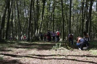 Piana Eco Festival 5